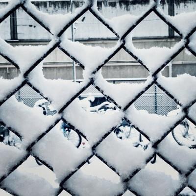 หิมะถล่มโตเกียว